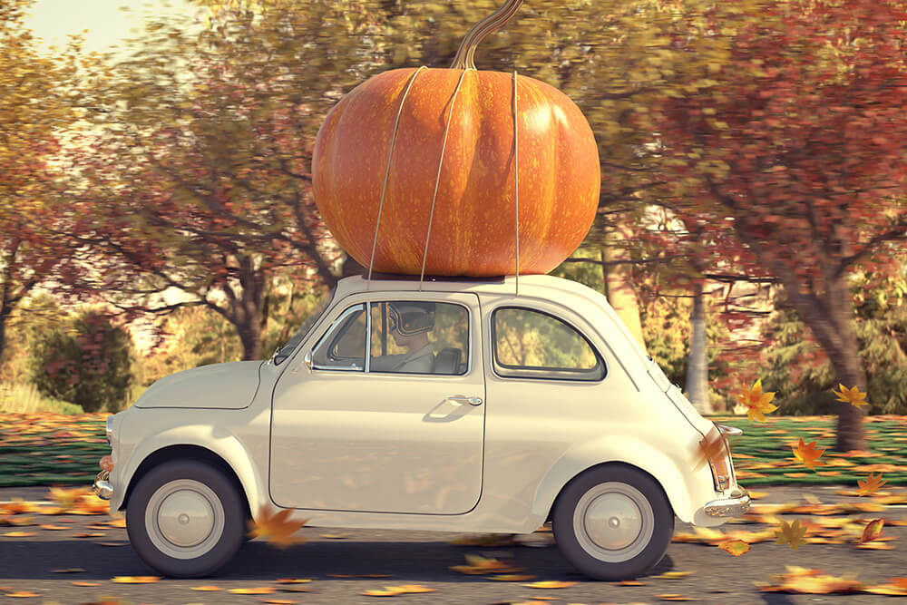 10 Practical Tips To Get Your Car Ready For Fall